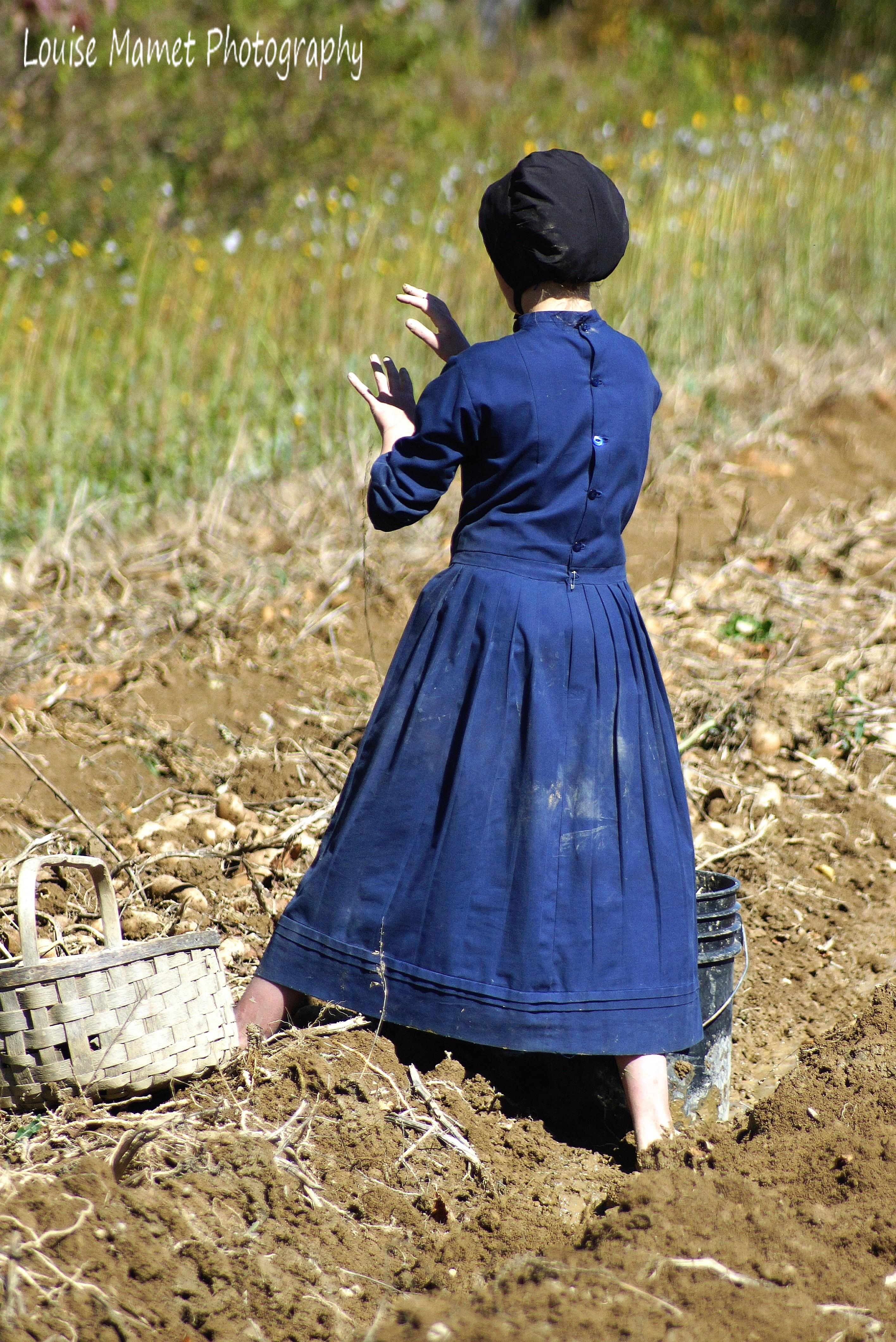 swartzentruber Amish datovania pravidládatovania červený nos