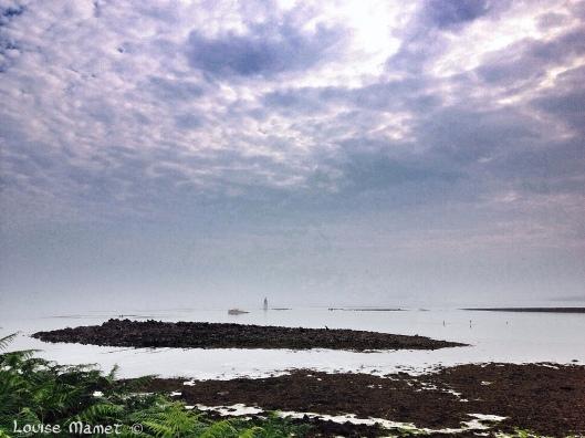 Photo 24-07-2014 09 55 01