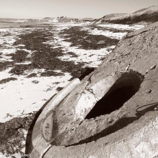 Reflexions sur un bunker (3)
