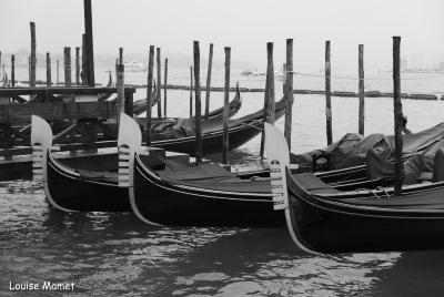 BW Gondola