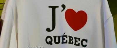 Enseignes drapeaux Quebec-1