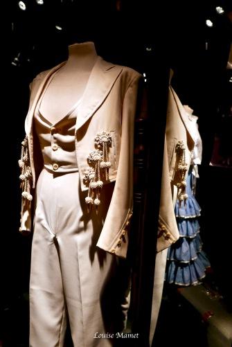 Flamenco museum-6