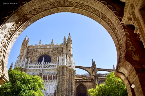 Seville Cathedrale