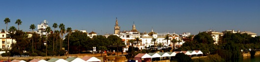 Sevillian Panorama-5